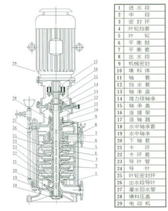 DL、DLR多级泵 结构图